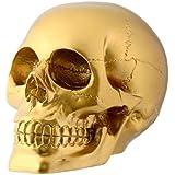 StealStreet Gold Skull Head Collectible Skeleton Decoration Figurine