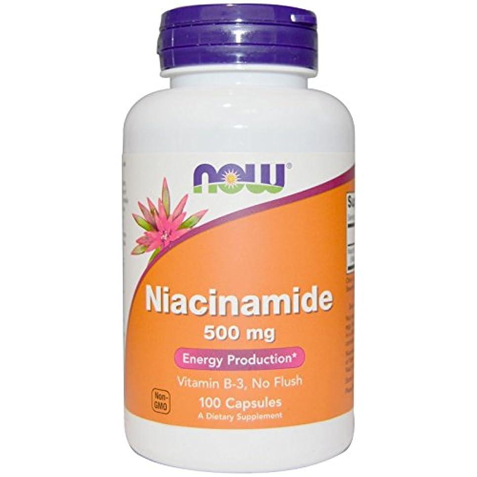 種をまく対処する再びNow Foods, ナイアシンアミド (ビタミンB-3)500 mg 100粒 【並行輸入品】