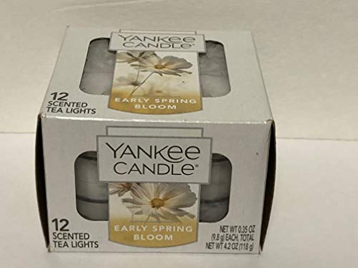 リッチ落ち着くリマークYankee Candle Early Spring Bloom
