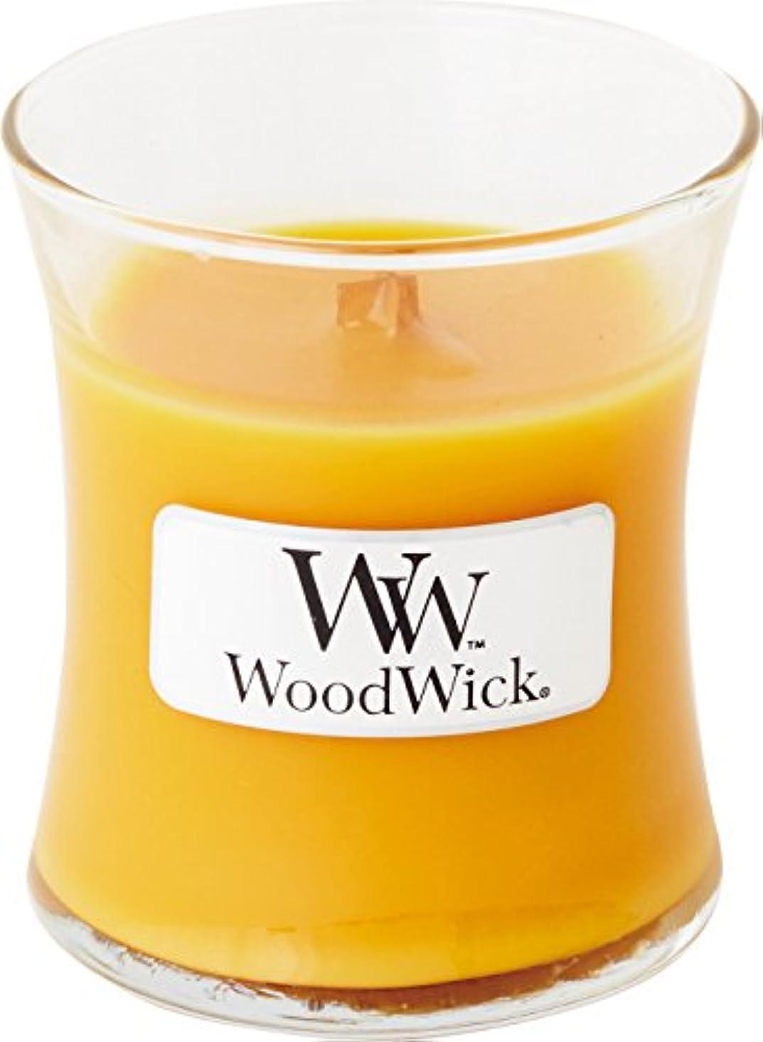 トンネルフロントマウンドWood Wick ウッドウィック ジャーキャンドルSサイズ スパークリングオレンジ