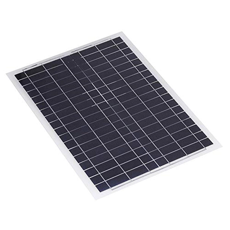 抱擁核過剰ソーラーパネル 20W 12Vポリ柔軟なポリソーラーパネル充電器電話の充電器についてはRVボートソーラーパネル 高変換効率 (Color : Black, Size : 20W)
