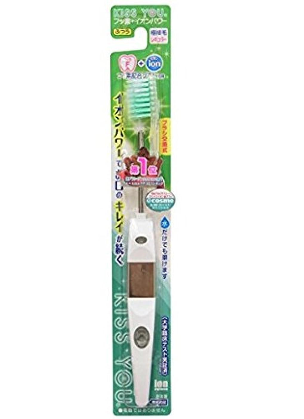 争う肯定的批判的フッ素イオン歯ブラシ極細レギュラー本体ふつう × 5個セット