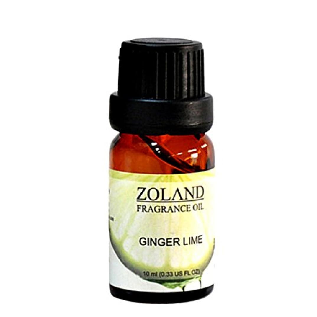 洗う広がり無許可Kweetop エッセンシャルオイル お試しセット 10ml AEAJ認定精油 表示基準適合認定精油 (Ginger Lime)