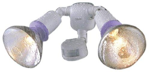 ムサシ B-Born センサーライト 防雨センサーライト(屋外球100W×2) B-7300