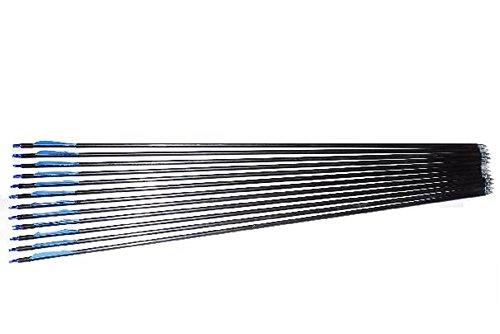 練習に最適 アーチェリー シャフト 完成矢 グラスファイバー 弓具 6本 12本 24本 セット (b.ブルー12本)
