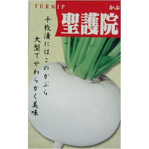 カブ 種 聖護院大丸 小袋(約8ml)