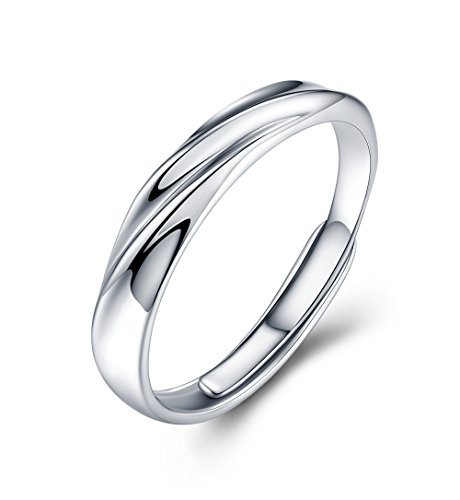 JUDYの秘密<愛の言葉>ペアリング メンズレディースリング キラキラ 結婚 婚約指輪 純銀制 キュービックジルコニア フリーサイズ (メンズ)