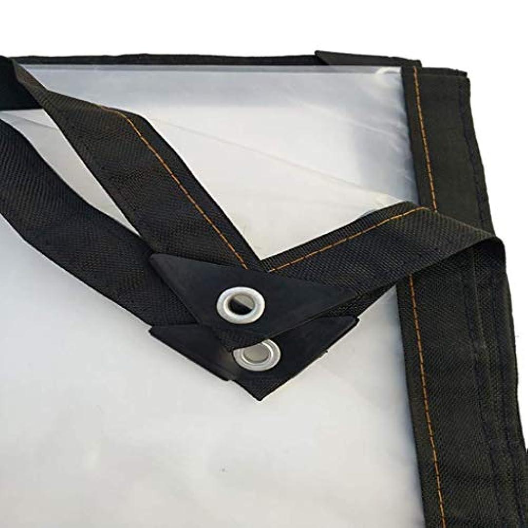 インストール分類クラッシュ19-yiruculture 屋外テント厚い透明ポンチョ防水日焼け止めプラスチック布屋外バルコニー防塵 (Color : A, サイズ : 2x1m)