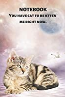 NOTEBOOK YOU HAVE CAT TO BE KITTEN ME RIGHT NOW: Funny & Cute Tabby With Pun: Blank Lined, Gift Journal for Diary Keeping, Fitness Tracking, Classwork, Compositions, Homework, Planning, Listing, School Notes, Lists & More: 6 x 9 in, 120 page