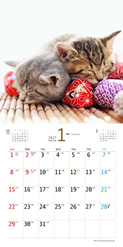 JTBのカレンダー こにゃんこ 2017 (諸書籍)