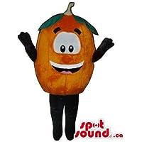 大きな目と笑顔でカスタマイズされたオレンジやタンジェリンマスコットSpotSoundカナダ