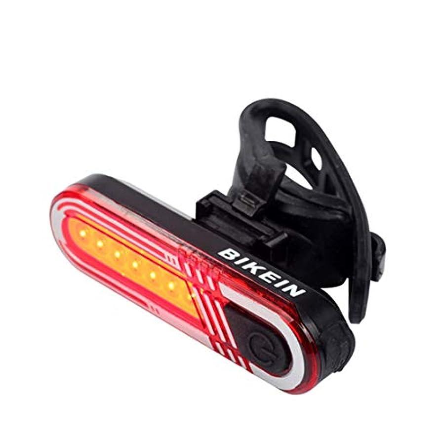 主観的一目航空会社CAFUTY マウンテンバイク強い光の灯具自転車アクセサリーUSB充電夜間走行警告灯マウンテンバイクに適した乗り物の安全灯自転車夜間の乗り物 (Color : レッド)