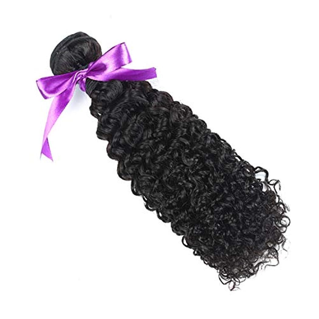 趣味前進日マレーシアの巻き毛の束8-28インチ100%の人間の毛髪は、Remyの毛のナチュラルカラー1個の髪の束を織ります (Stretched Length : 20inches)