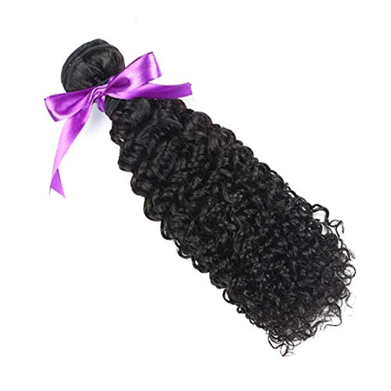 ポータル不愉快痛みかつら マレーシアの巻き毛の束8-28インチ100%の人間の毛髪は、Remyの毛のナチュラルカラー1個の髪の束を織ります (Stretched Length : 24inches)