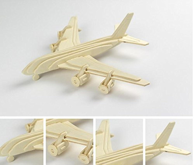 HuaQingPiJu-JP 創造的な木製の3Dパズルアーリーラーニングの形状透明なツール子供のためのおもちゃのファンタスティックギフト(平面)