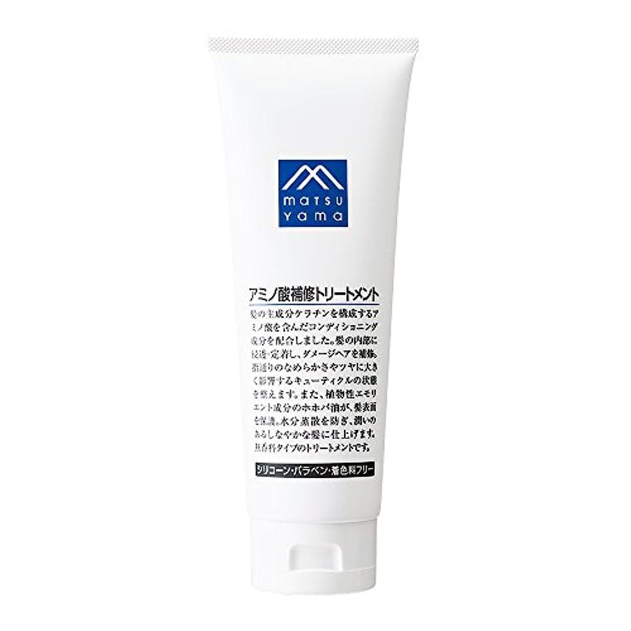 健康忠誠ホバーM-mark アミノ酸補修トリートメント