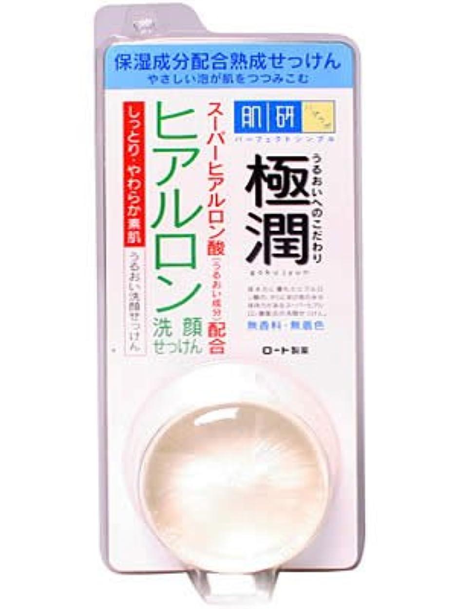 騒ブースト縮約肌研 ハダラボ 極潤ヒアルロン洗顔せっけん 60g