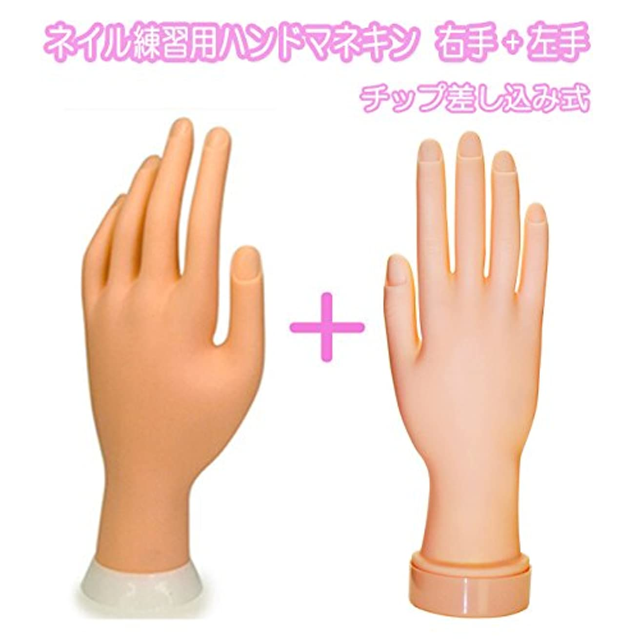 中に運命無意識ネイル練習用ハンドマネキン2個(右手/左手)/チップ差し込み式 (右手1個+左手1個)