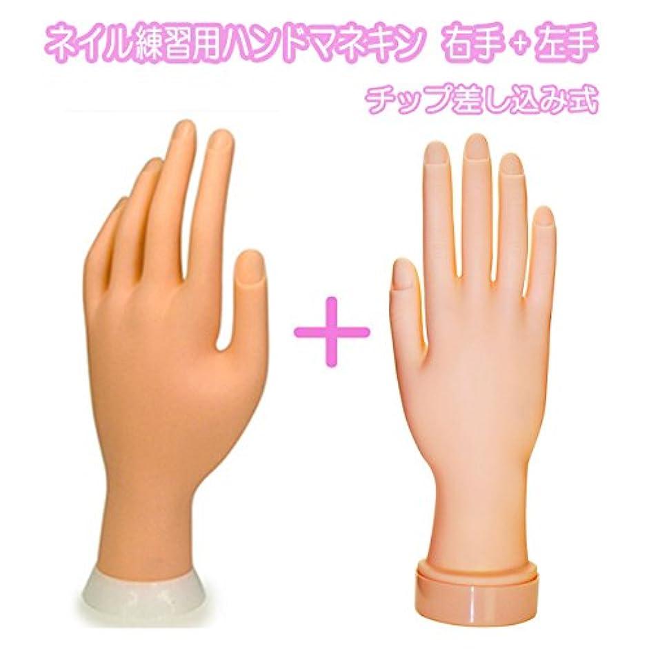 ネイル練習用ハンドマネキン2個(右手/左手)/チップ差し込み式 (右手1個+左手1個)