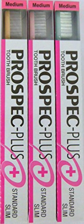 値ペッカディロポールGC プロスペック 歯ブラシプラス スタンダードスリム M (3本セット)