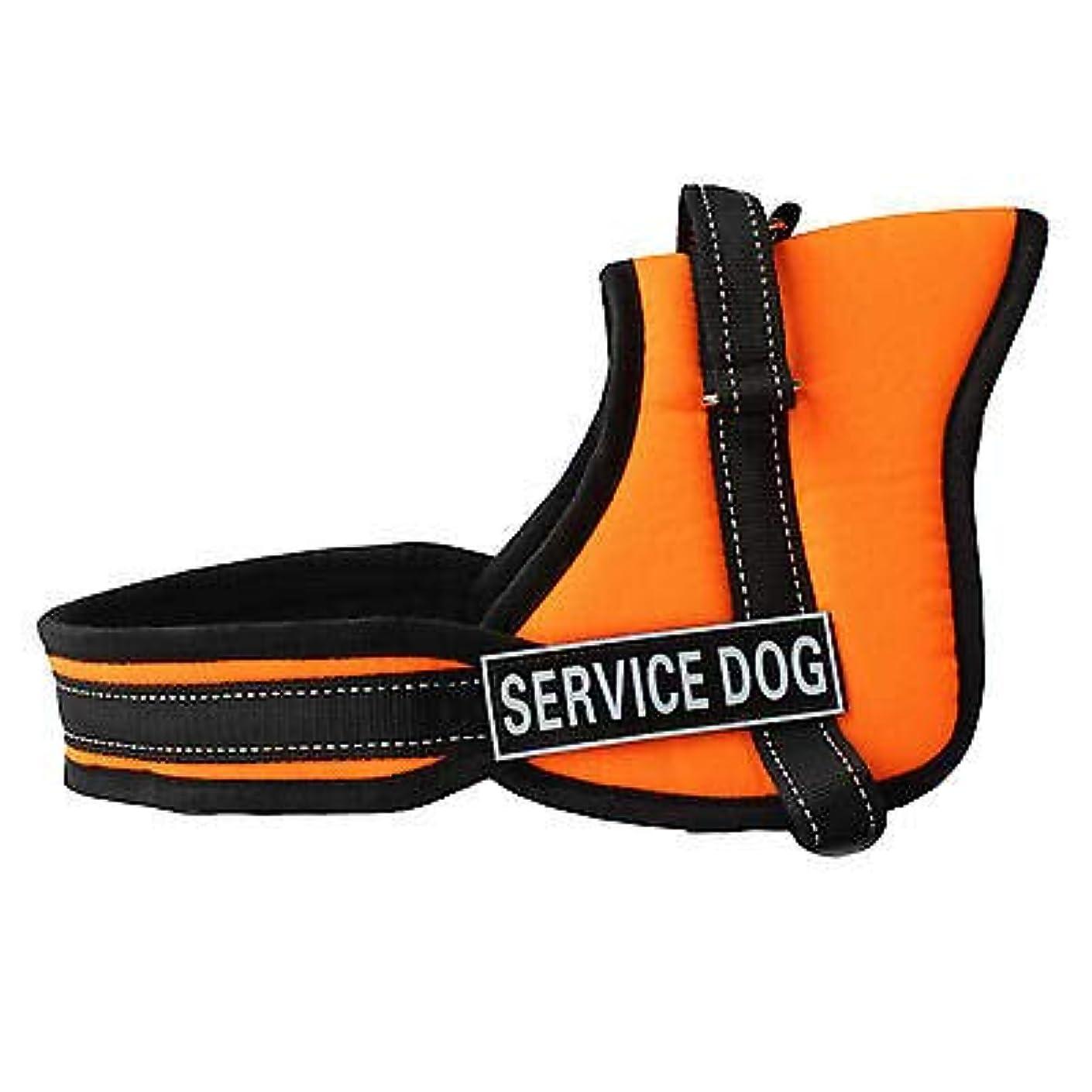 ホストリボン洗練FidgetGear Nylon Service Training Dog Harness vest Padded Heavy Duty Pitbull Husky Boxer Orange M