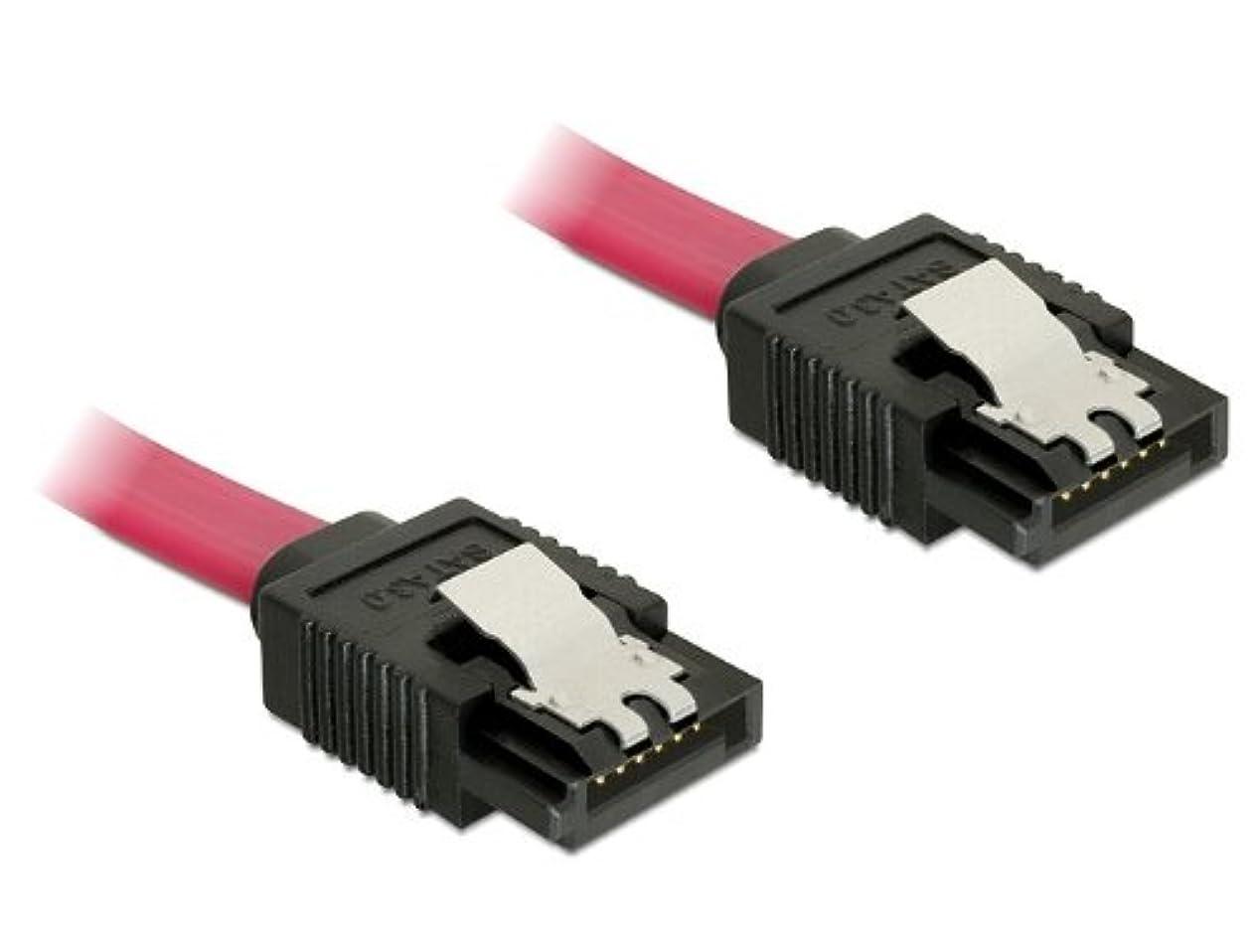 レンズペンフレンドアストロラーベDelock SATA 6 Gb/s 20cm red