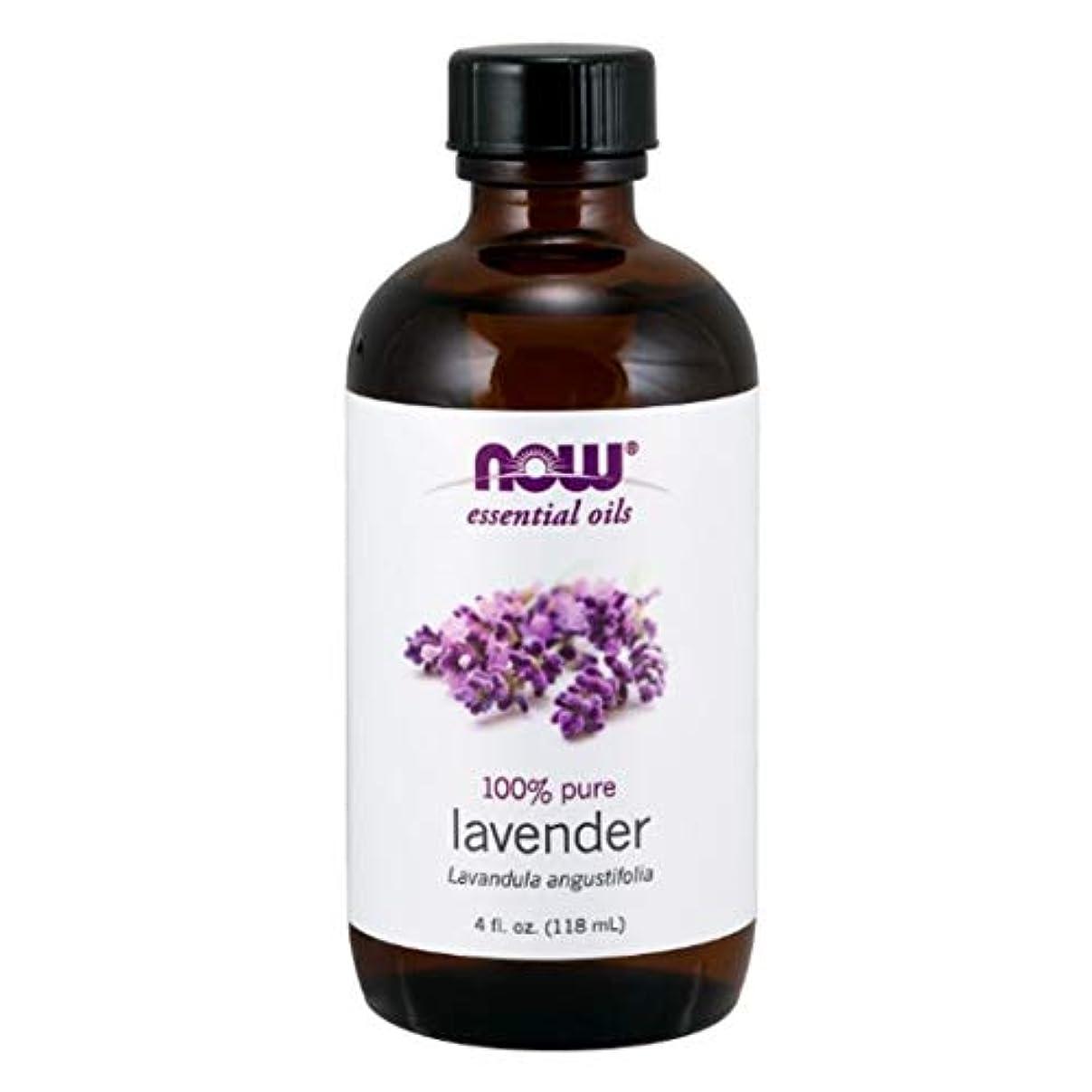 エキス方程式ファンネルウェブスパイダーNow - Lavender Oil 100% Pure 4 oz (118 ml) [並行輸入品]