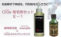 CroixスカルプエッセンスE-1セット Croix育毛剤セットE-1(1ヶ月分)