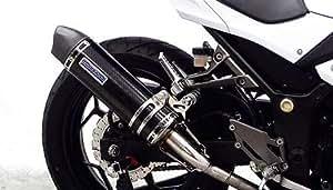 WirusWin(ウイルズウィン) スリップオンマフラー ユーロタイプ ブラックカーボン Ninja250R【JBK-EX250K】用 1052-30-26