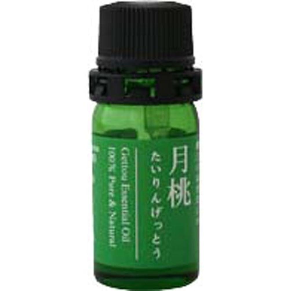 染色運河うぬぼれ月桃 エッセンシャルオイル (タイリン) 2.5ml