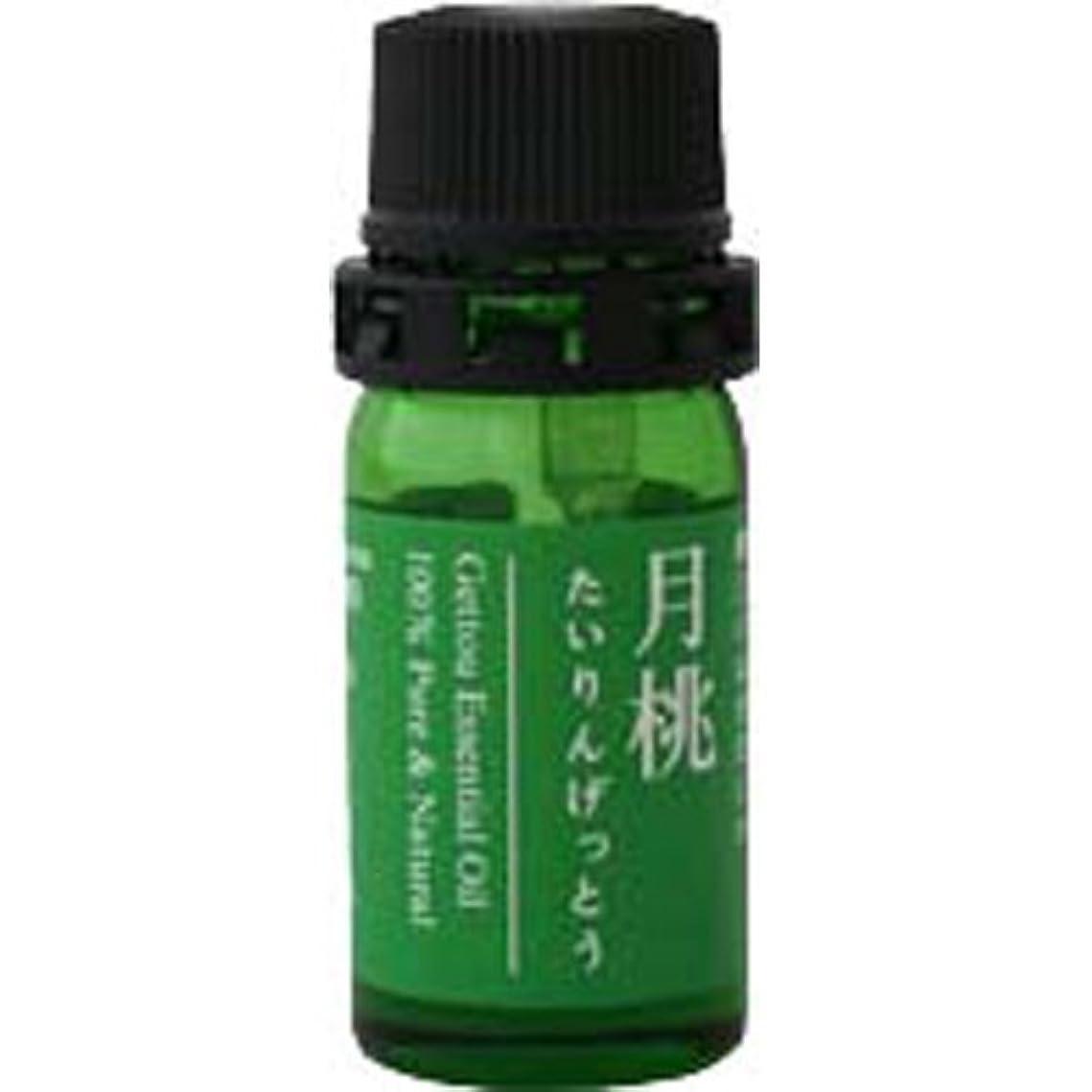 名前ロバ店員月桃 エッセンシャルオイル (タイリン) 2.5ml