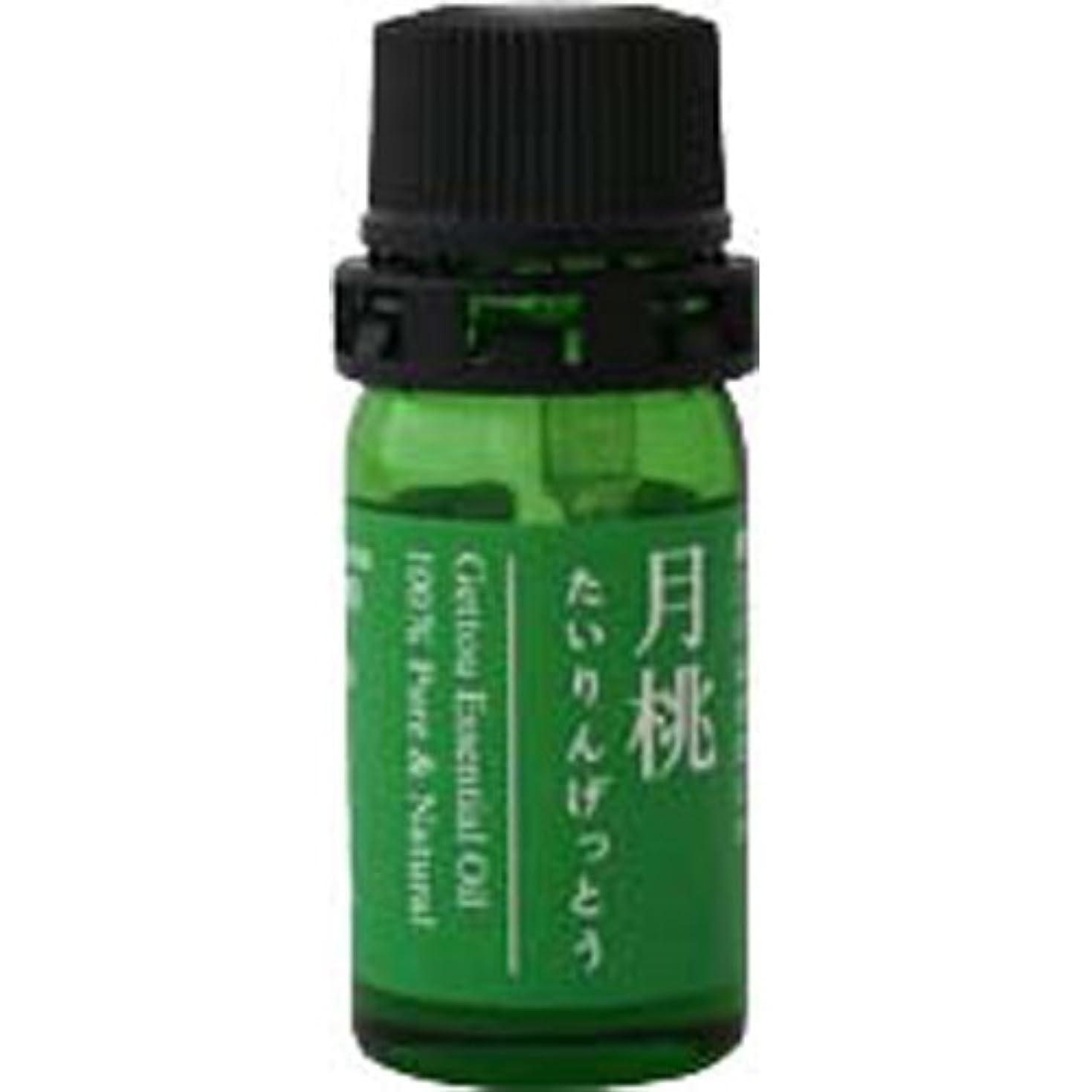 ピア不安定なプロトタイプ月桃 エッセンシャルオイル (タイリン) 2.5ml