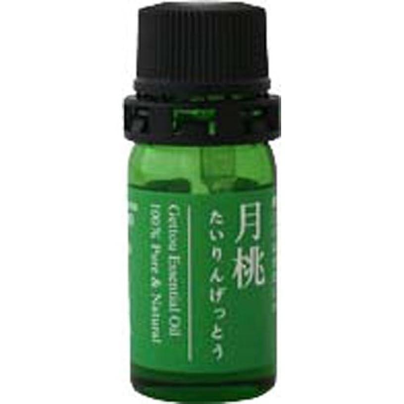 ラフトわかるヘロイン月桃 エッセンシャルオイル (タイリン) 2.5ml