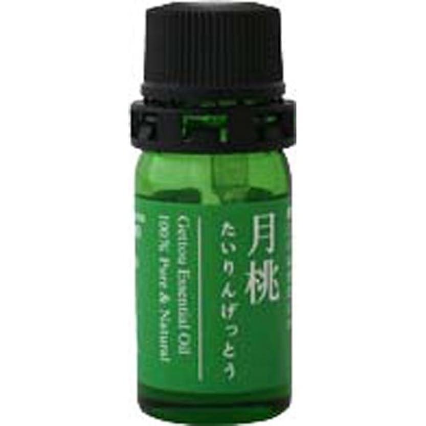標準自発生月桃 エッセンシャルオイル (タイリン) 2.5ml