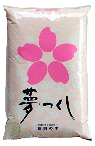 藤食糧 玄米 福岡県産夢つくし 5kg(5kg×1袋)
