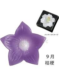 カメヤマキャンドル 花づくし(桔梗)