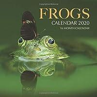 Frogs Calendar 2020: 16 Month Calendar