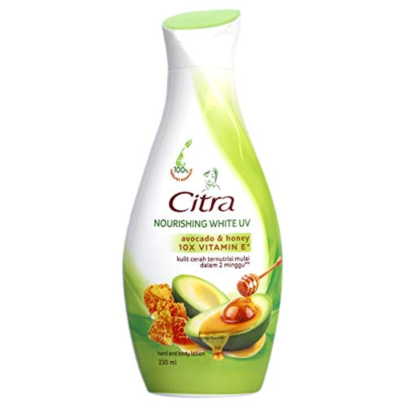 Citra チトラ Hand and Body Lotion ハンドボディローション アボカド&ハニー 230ml [海外直送品]