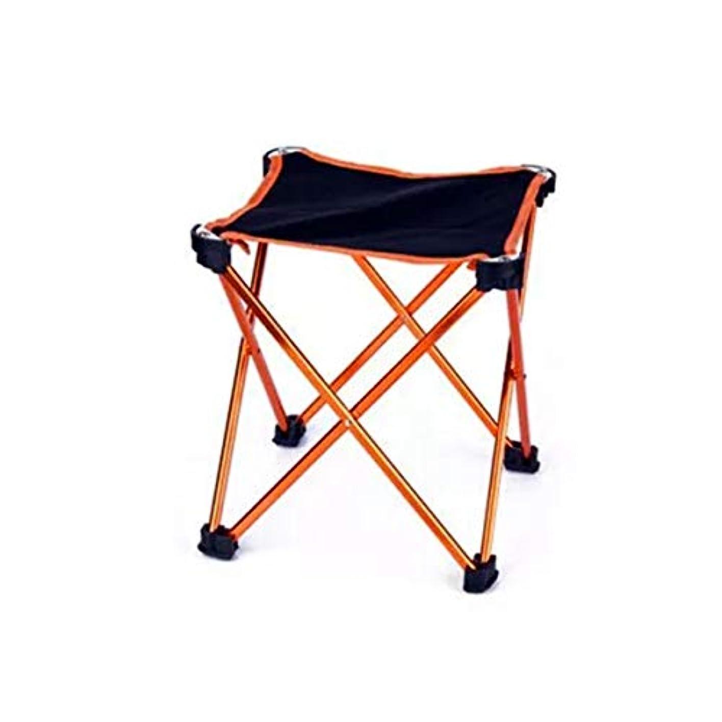 群がるシマウマ公スチール チェアー 折りたたみ椅子 折りたたみ アウトドア スツール 軽量 耐荷量 100kg コンパクト キャンプ 運動会 スポーツ観戦 椅子 イス レジャー 釣り お花見