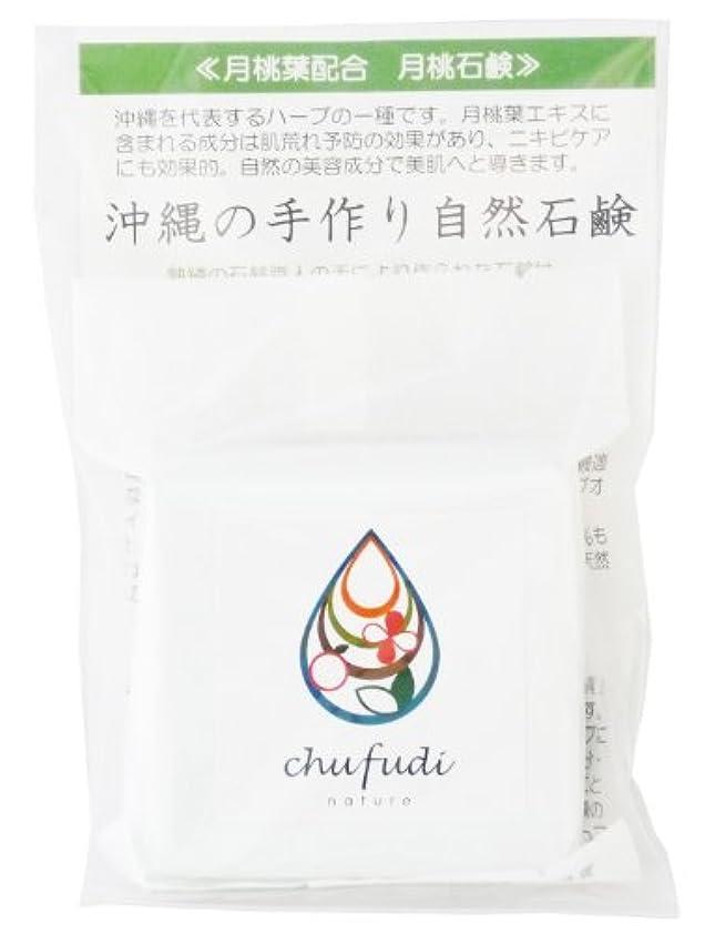 石炭ポップアルプスチュフディ ナチュール 沖縄ハーブ 月桃石鹸