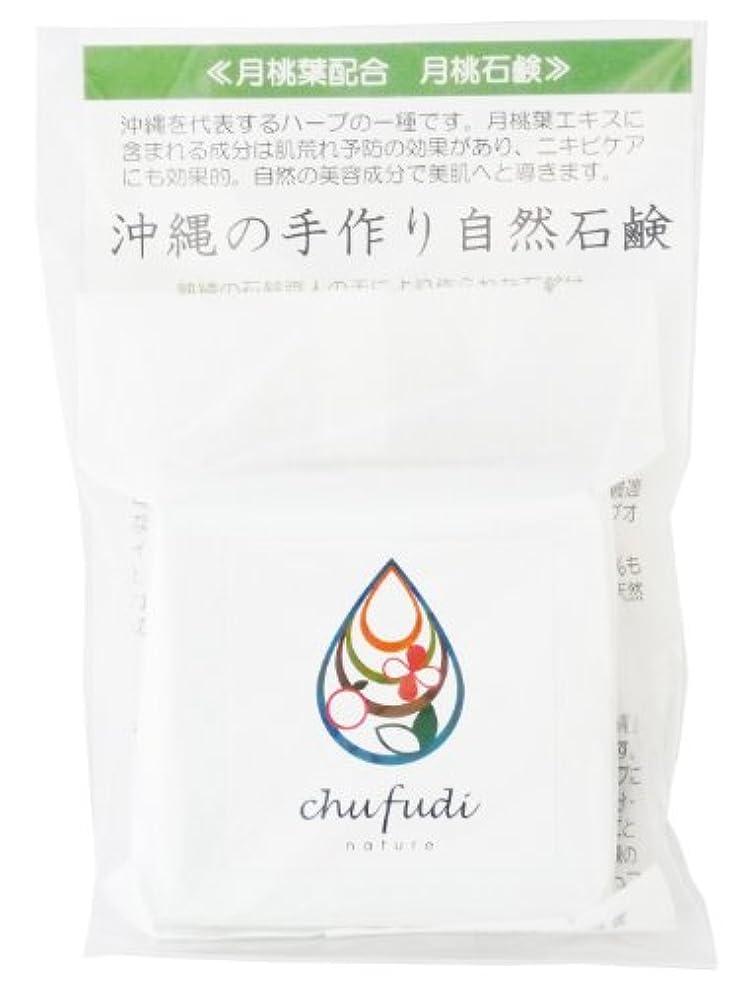 共産主義プレート性的チュフディ ナチュール 沖縄ハーブ 月桃石鹸