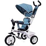 子供のための4-in-1親プッシュ三輪車、ベビーカーのトライクコンバーチブル、旋回椅子、リクライニングシート、フルキャノピー、収納箱 ( Color : 1 )