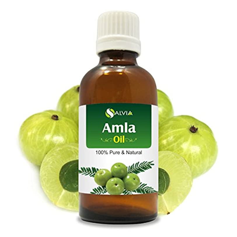 タイムリーな検閲顎AMLA OIL 100% NATURAL PURE UNDILUTED UNCUT ESSENTIAL OIL 100ML
