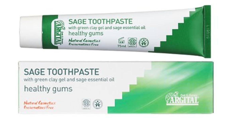 増強するシンプルさ回転させるアルジタル グリーンクレイ歯みがき (セージ) 75mL