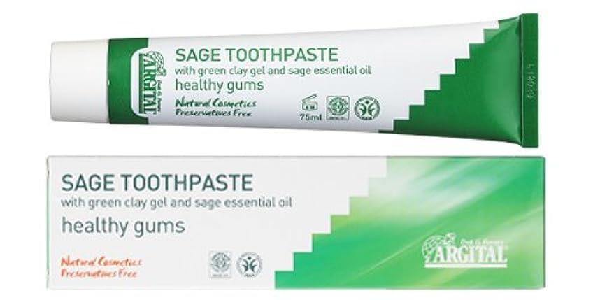 差別するプラスチックマーチャンダイジングアルジタル グリーンクレイ歯みがき (セージ) 75mL