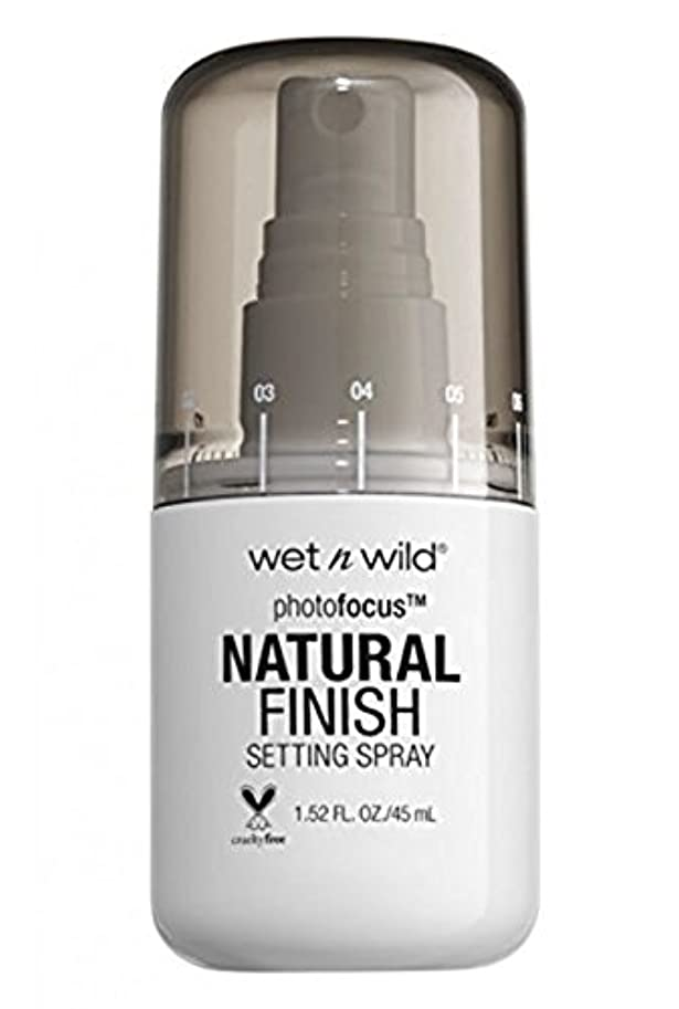 合体重くする知的WET N WILD Photo Focus Setting Spray (並行輸入品)