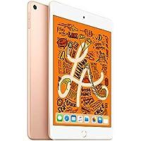 iPad mini Wi-Fi 256GB - ゴールド