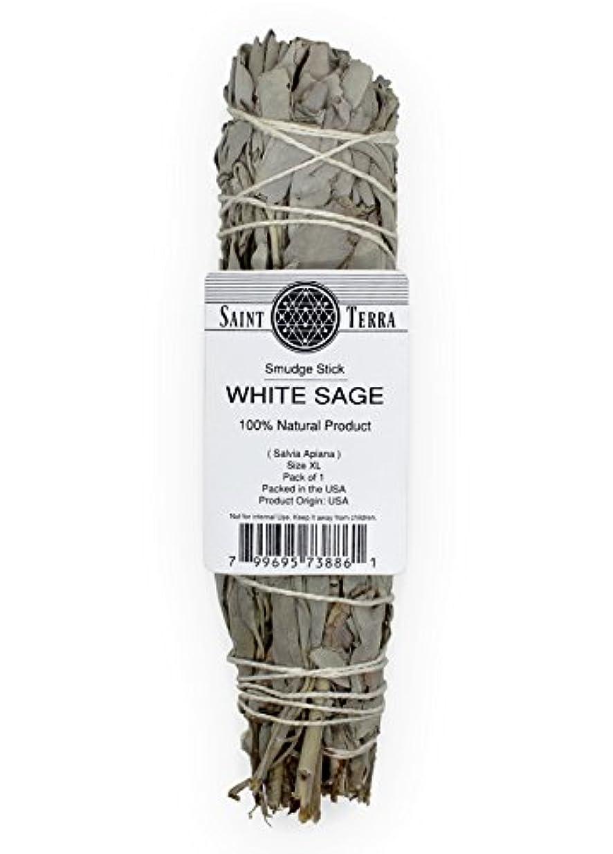 絶妙ギャラリー海Saint Terra – Extra LargeジャンボホワイトセージSmudge Stick ( 8.5 inches long )