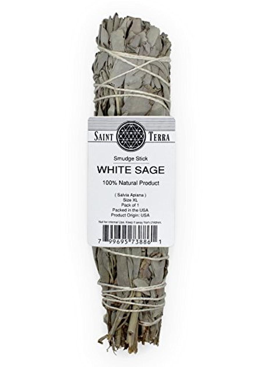つぶすグループ無許可Saint Terra – Extra LargeジャンボホワイトセージSmudge Stick ( 8.5 inches long )