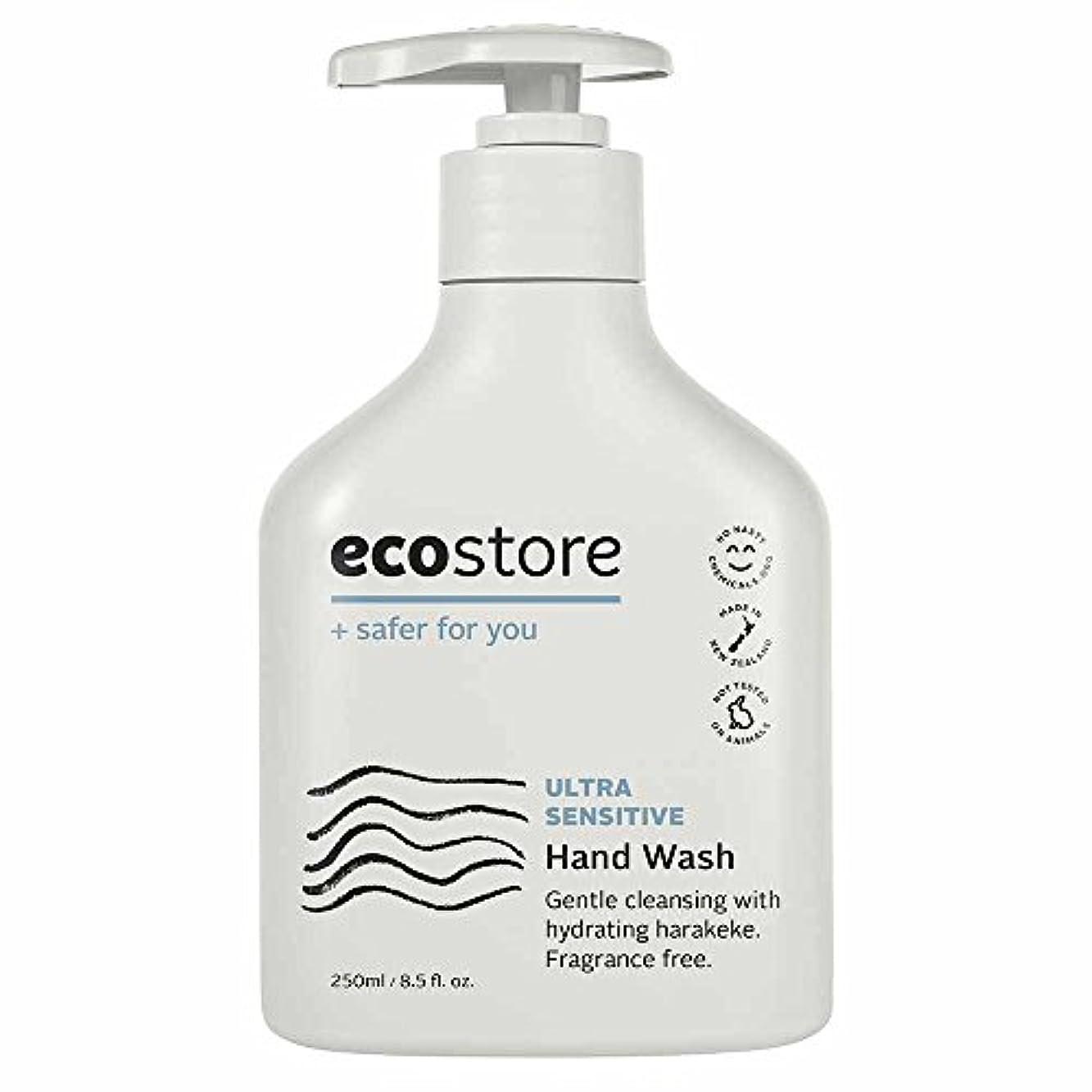 熱心なさびた夜ecostore(エコストア) ハンドウォッシュ 【無香料】 250ml 液体タイプ